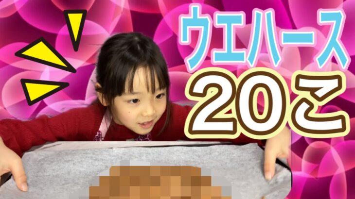 【ウエハース大量消費】ウエハース20個を美味しいアレ!に変身させました☆子供が作れる簡単おやつ♪