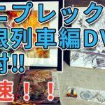 【アニプレックス】無限列車編DVD開封!! 最高過ぎるキャラファイングラフ!!【鬼滅の刃 】