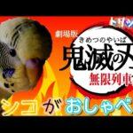 【鬼滅の刃】(KimetsunoYaiba)劇場版『無限列車編』LiSA炎☆インコがおしゃべり♪セキセイインコbudgerigar