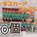 【鬼滅の刃グッズ開封】ステータスカードコレクション